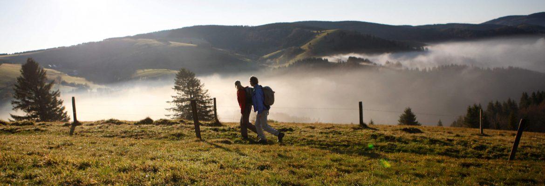 Nordschwarzwald - Blick ins Murgtal
