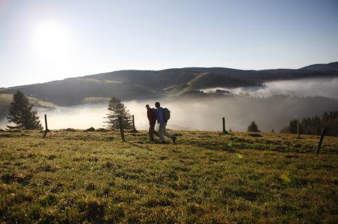Die Ferienregion Schwarzwald bietet gut 24.000 Kilometer einheitlich ausgeschilderte Wanderwege: Wanderer am Schauinsland bei Freiburg. Das Foto ist frei für die Veröffentlichung in Katalogen von Reiseveranstaltern und in Verlagsproduktionen.