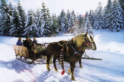 Pferdeschlittenfahrt am Schluchsee im südlichen Schwarzwald. Das Foto ist frei für die Veröffentlichung in Katalogen von Reiseveranstaltern und in Verlagsproduktionen.