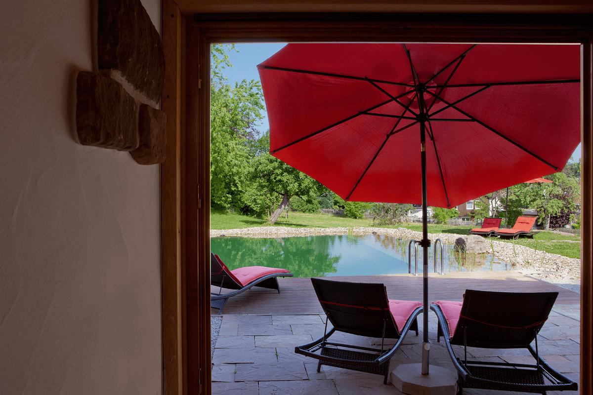 Aussicht auf Naturschwimmteich mit Liegestühlen - Konradshof